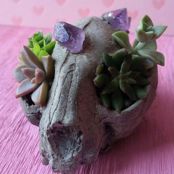 Creepy Cat Skull Planter